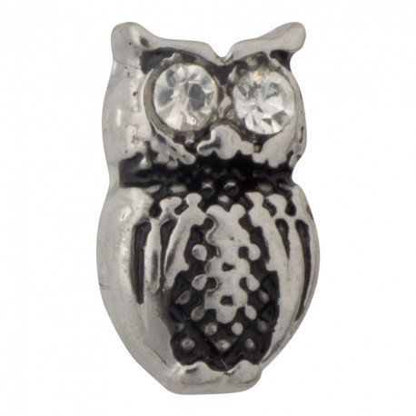 Owl Floating Charm