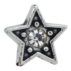 Star with Crystal Floating Charm
